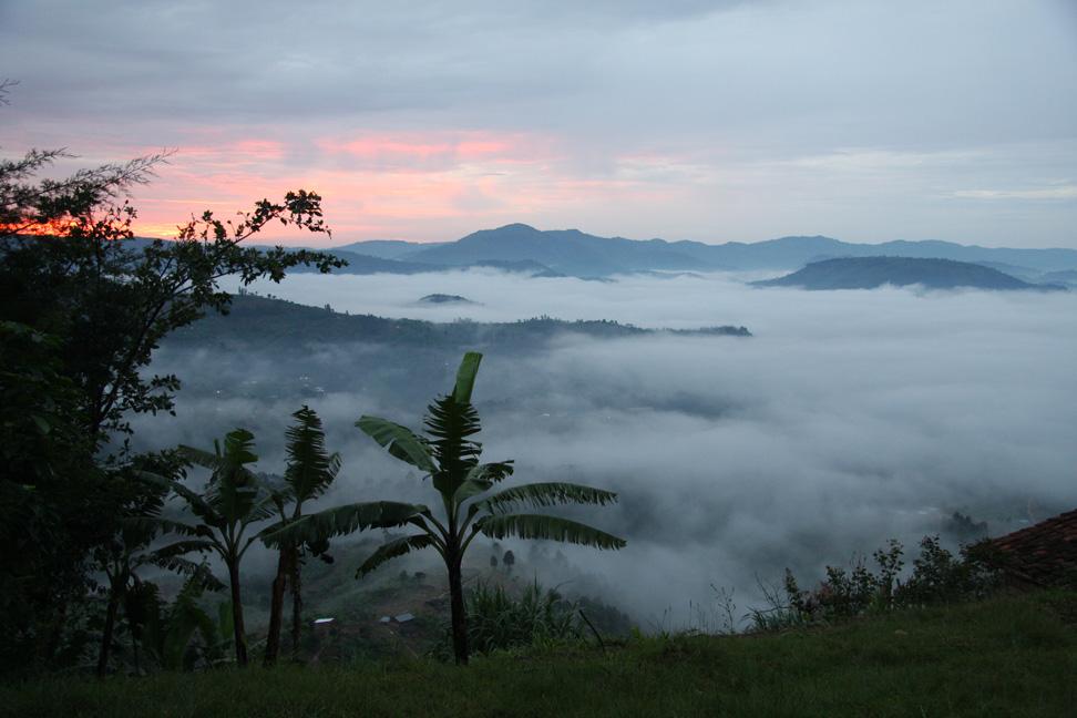 Blog-RuandaGorilSafari13