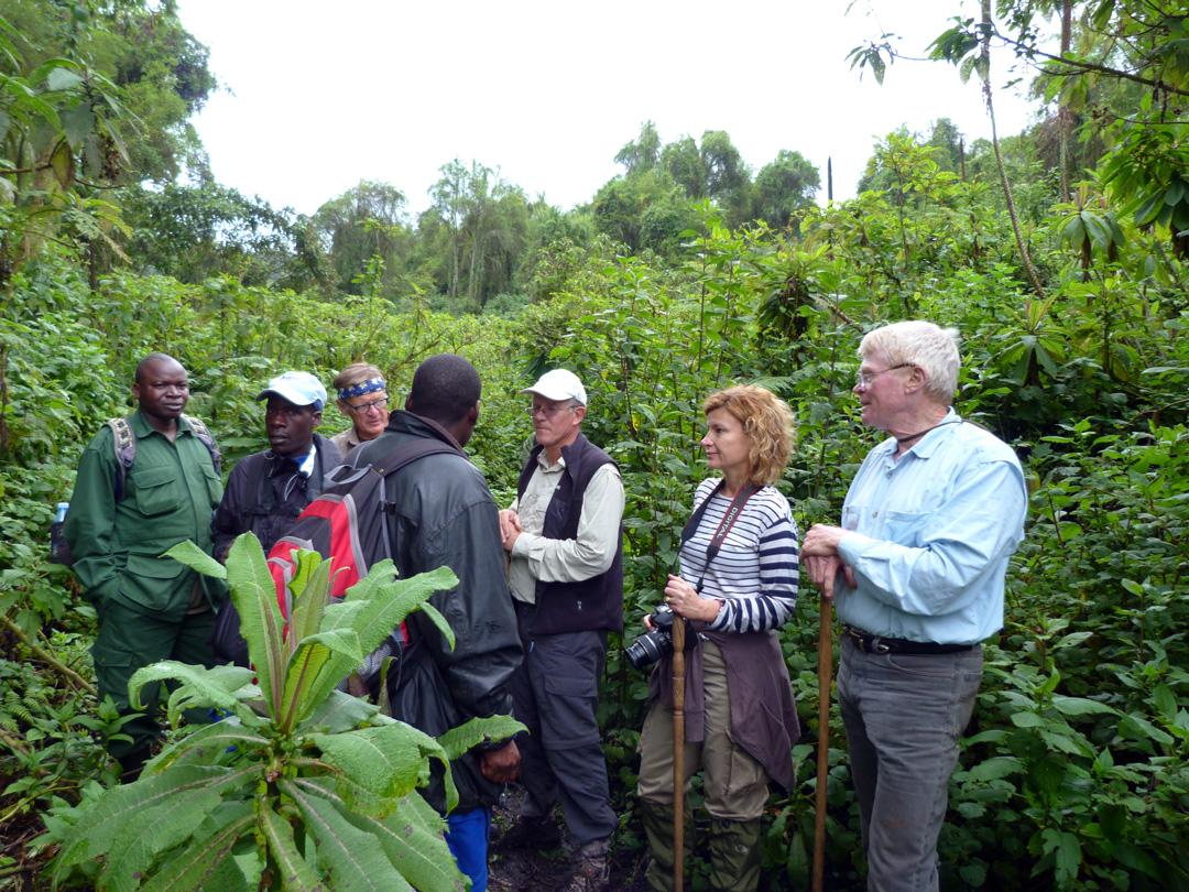 Blog-RuandaGorilSafari6