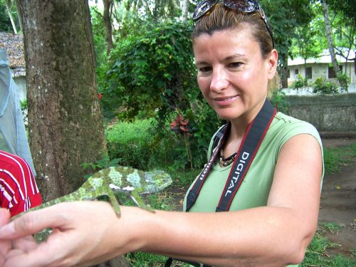 Tanzanya'nın adası Zanzibar'da hayvanlarla iç içe...